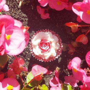 Rosehip Buttercup